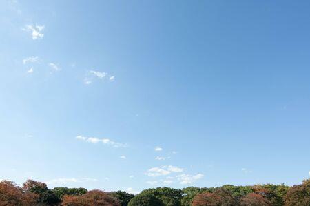 Onigiri101100012