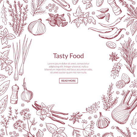 Illustration pour Vector hand drawn herbs and spices background with place for text illustration. Organic herb and spice, fresh sketch herbal - image libre de droit