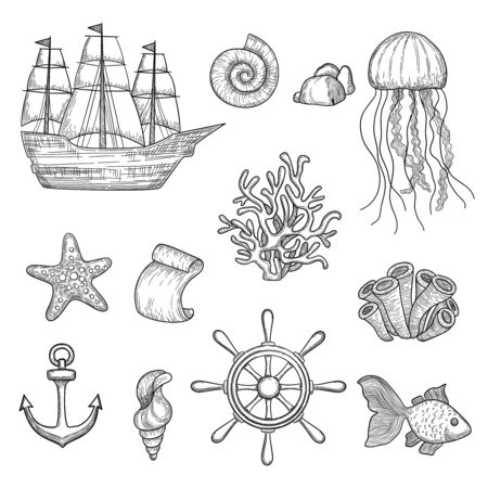 Illustration pour Nautical elements. Ocean fish shells boats ships knot travel marine symbols vector hand drawn collection. Ocean and sea marine elements, boat and shell illustration - image libre de droit