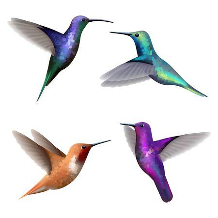 Illustration pour Hummingbirds. Exotic little colored beautiful flying birds colibri vector realistic pictures collection. Illustration humming bird, colibri exotic fly - image libre de droit