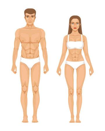 Illustration pour Model of sporty man and woman standing front view. Different body parts. Vector illustration. Female and male body front - image libre de droit
