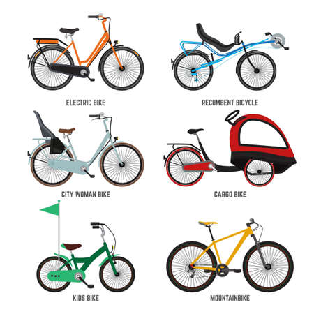 Illustration pour Different type of bicycles for male female and kids. Bikes for family. Vector illustrations kids bike and mountain bike isolate on white - image libre de droit