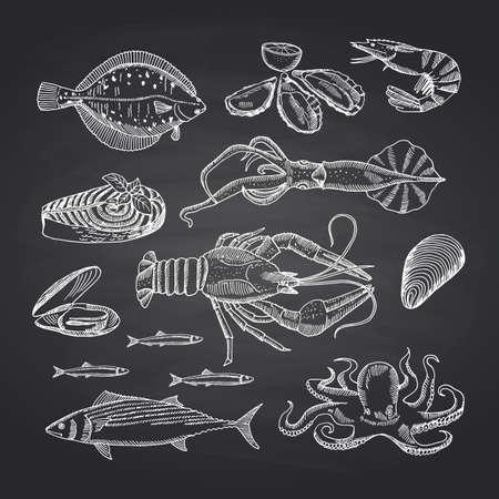 Illustration pour Vector hand drawn seafood elements on black chalkboard set. Illustration of seafood sketch, oyster and shrimp, crab and lobster - image libre de droit