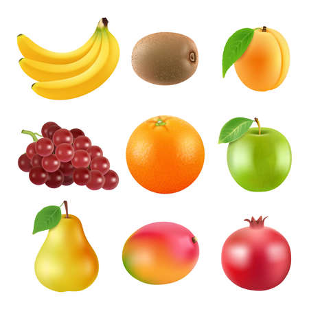Illustration pour Different illustrations of fruits. Realistic vector pictures isolate on white - image libre de droit