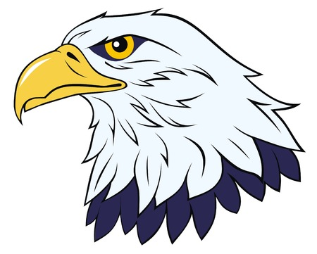 Color vector illustration of eagle head