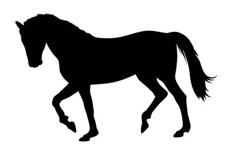Illustration pour Vector illustration of running horse silhouette - image libre de droit