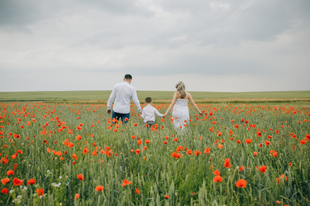 Photo for Family walking in poppy field holding hands - Royalty Free Image