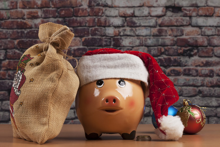 Piggy Bank with Dollars and Chtistmas Decorations