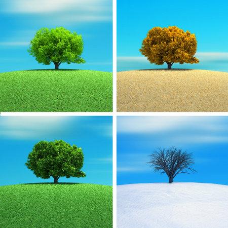 A tree in four season - 3d render