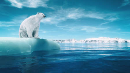 Photo pour Polar bear on a piece of glacier. This is a 3d render illustration - image libre de droit