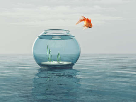 Photo pour Goldfish in a bowl jumping in the sea. This is a 3d render illustration - image libre de droit