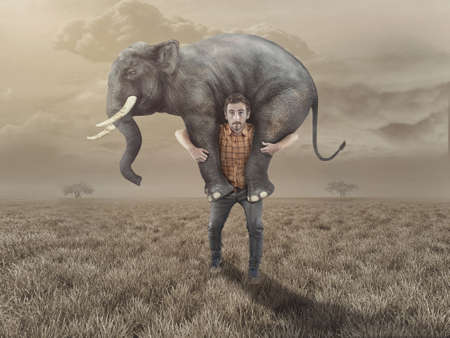 Photo pour Man carries an elephant in the field. - image libre de droit