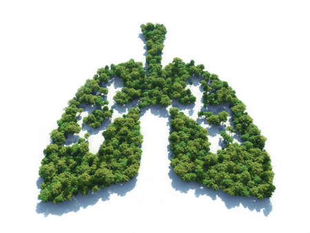 Foto per Conceptual image of a forest in shape of lungs - 3d illustration - Immagine Royalty Free