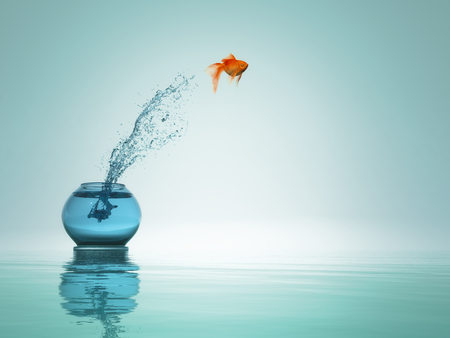 Photo pour goldfish jump from bowl to the sea. - image libre de droit