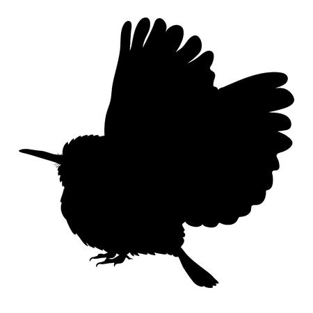 Cuban silhouette Tody Bird exotic. vector illustration