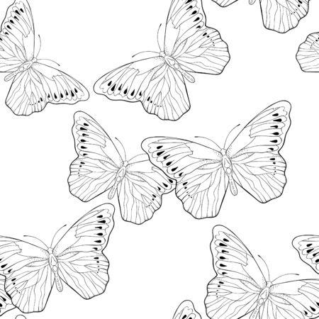 Photo pour coloring seamless pattern Indonesia exotic Butterfly Hebomoia Leucippa vector illustration - image libre de droit