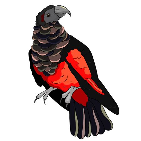 Illustration pour Bird eagle black-red bristle-headed griffin parrot vector illustration - image libre de droit