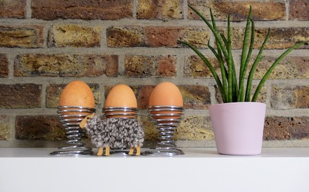 Photo pour Trio of eggs on shelf - image libre de droit