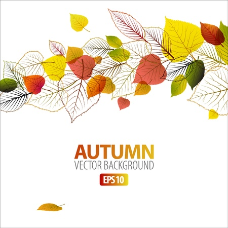Vector Autumn abstract floral background with place for your textのイラスト素材