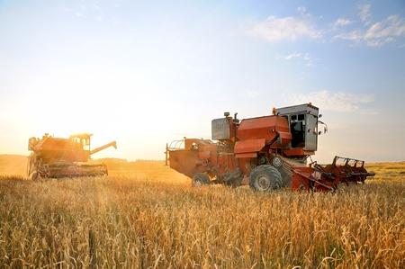 Photo pour Combine Harvester. Combine harvesting. Agricultural machinery. Harvest. Farming in the field. - image libre de droit
