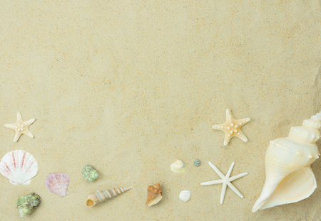 Table top view aerial image sign of decoration summer holiday & nature background concept.Flat lay essentials accessories for travel to beach trip.Variety shell on white sand sea.Free space for text.