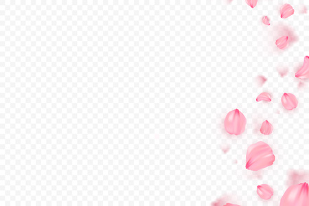 Photo for Pink sakura falling petals vector background. 3D romantic illustration. Transporent banner with sakura. Love card - Royalty Free Image