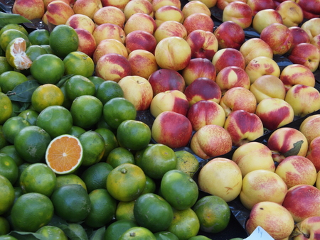Green mandarin oranges and nectarines