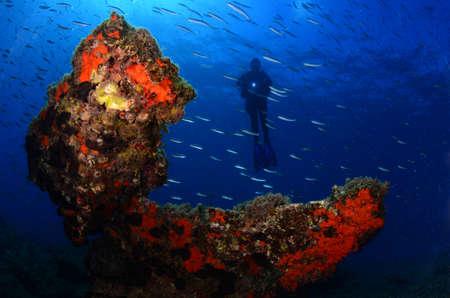 Photo pour Underwater modeling. Reserve light, blue background. - image libre de droit