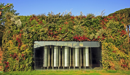 Photo for wine fermenter in vineyard near saint tropez on the french riviera  - Royalty Free Image