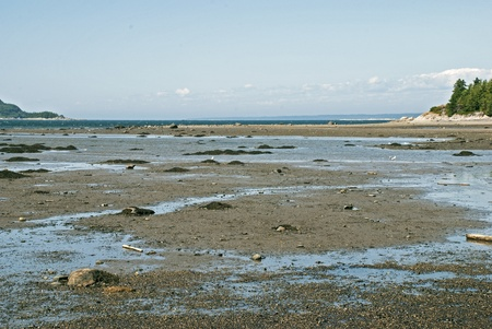 St. Lawrence River estuary at low tide by Le Bic, Gaspe, Quebec, Canada