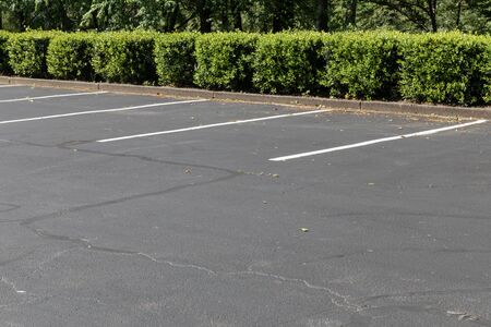 Photo for Empty lined asphalt parking lot bordered by bushes and trees, horizontal aspect - Royalty Free Image