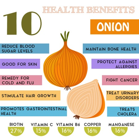 10 Health benefits information of Onion. Nutrients infographic,  vector illustration. - stock vector