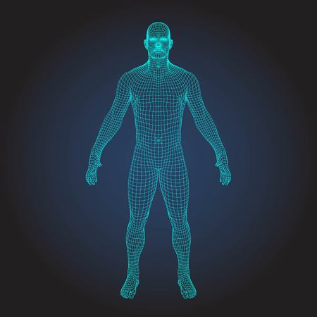 Photo for 3D wireframe human body - Royalty Free Image