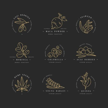 Illustration pour Superfoods line vector icons. Berries, powder, vegetables or fruits and seeds. Organic superfoods for health and diet. Detox and weightloss supplements. - image libre de droit