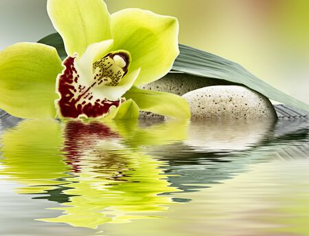 Photo pour spa of orchids and stones in water - image libre de droit