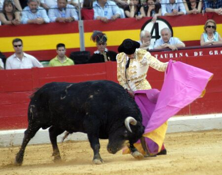 The bullfighter Cayetano Rivera in the bullfight held in Granada on 7 June 2007, at Feria de Corpus