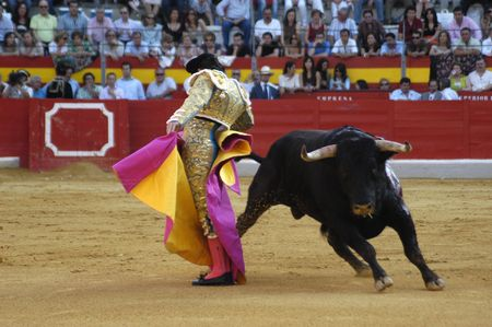 The bullfighter David Fandila, El Fandi, in the bullfight held in Granada on 7 June 2007, at Feria de Corpus