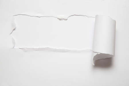 the sheet of torn paper against the white background