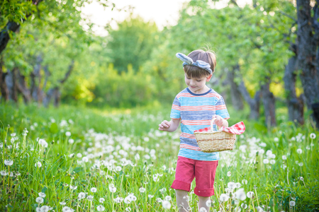Photo pour Cute little kid boy with bunny ears having fun with traditional Easter eggs hunt on warm sunny day, outdoors. Celebrating Easter holiday. - image libre de droit