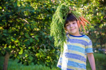 Foto für Fun portrait of a cute child holding a homegrown organic carrot over his head outdoors. - Lizenzfreies Bild