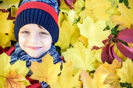 Foto de Emotional portrait of a happy and active little boy looking at the camera with a smile lying on his back on a carpet of yellow fallen leaves in the autumn park. Positive emotions - Imagen libre de derechos