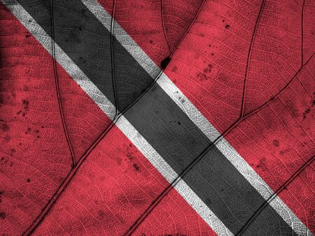 Trinidad and Tobago flag leaf texture