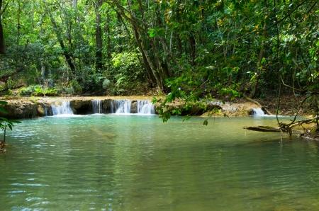 Stream in the tropical jungl