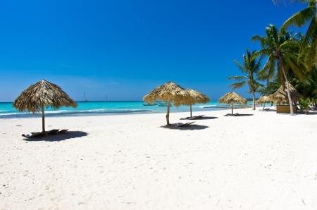 Palm Thatch Caribbean Beach