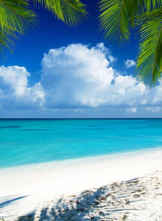 Photo for beach and tropical sea. tropical island - Royalty Free Image