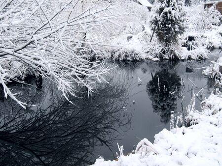 Photo pour Forest lake. Winter.  - image libre de droit