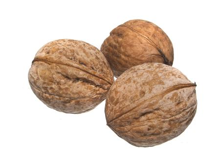 Foto de nut isolated on white background - Imagen libre de derechos