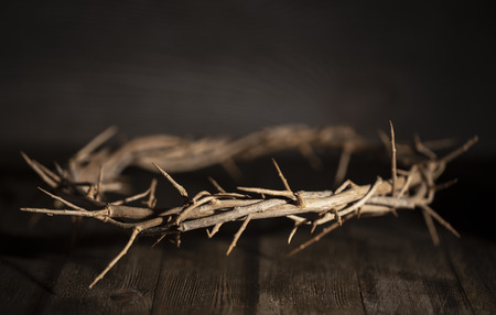 Photo for Jesus Crown of Thorn in a Moody Environment - Royalty Free Image