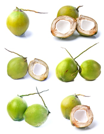 Coconut collection