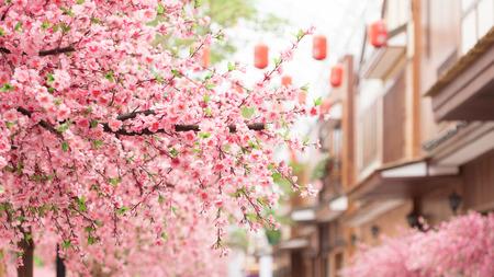 Photo pour beautiful pink cherry blossom Sakura flower, and with vintage japan building background. - image libre de droit